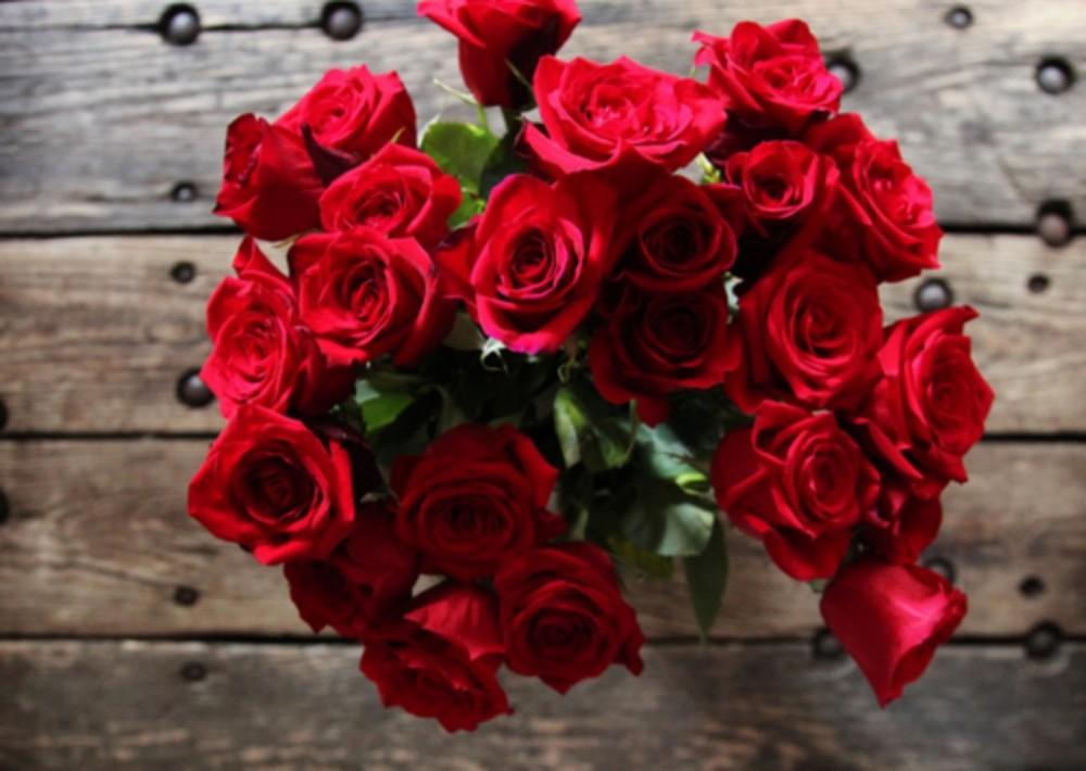 بالصور زهور الحب , ما هي زهور الحب 184