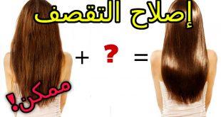 صوره علاج تقصف الشعر , كيفية علاج الشعر