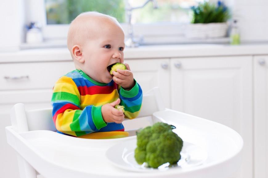 صور تغذية الطفل , الاساسيات التي يجب مراعتها لتغذية الطفل