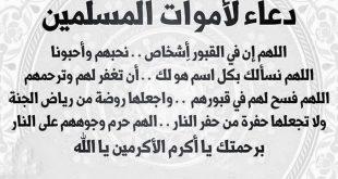 صوره دعاء الميت , اهم ما يقيل للمتوفي