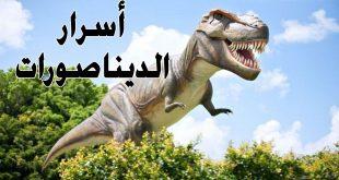 صور معلومات عن الديناصورات , سر انقراض الديناصورات