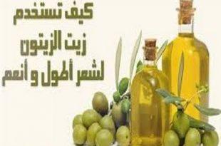 بالصور زيت الزيتون للشعر , فوائد زيت الزيتون 354 3 310x205