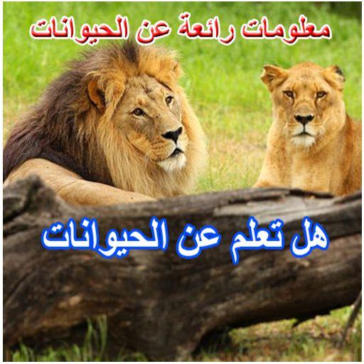بالصور معلومات عن الحيوانات , ماذا تعرف عن الحيوانات 415 1