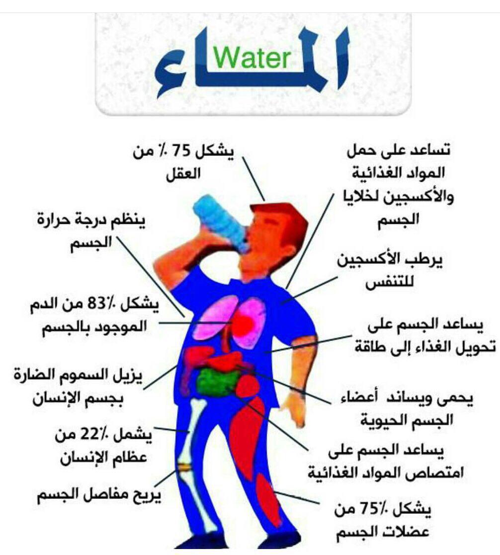 بالصور فوائد الماء , معلومات مهمة عن الماء 4992 2
