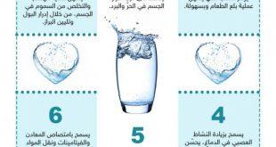 صوره فوائد الماء , معلومات مهمة عن الماء