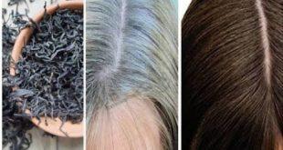صوره علاج الشيب المبكر , التخلص من الشعر الابيض