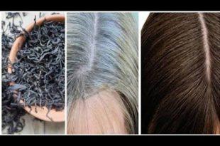 بالصور علاج الشيب المبكر , التخلص من الشعر الابيض 514 3 310x205