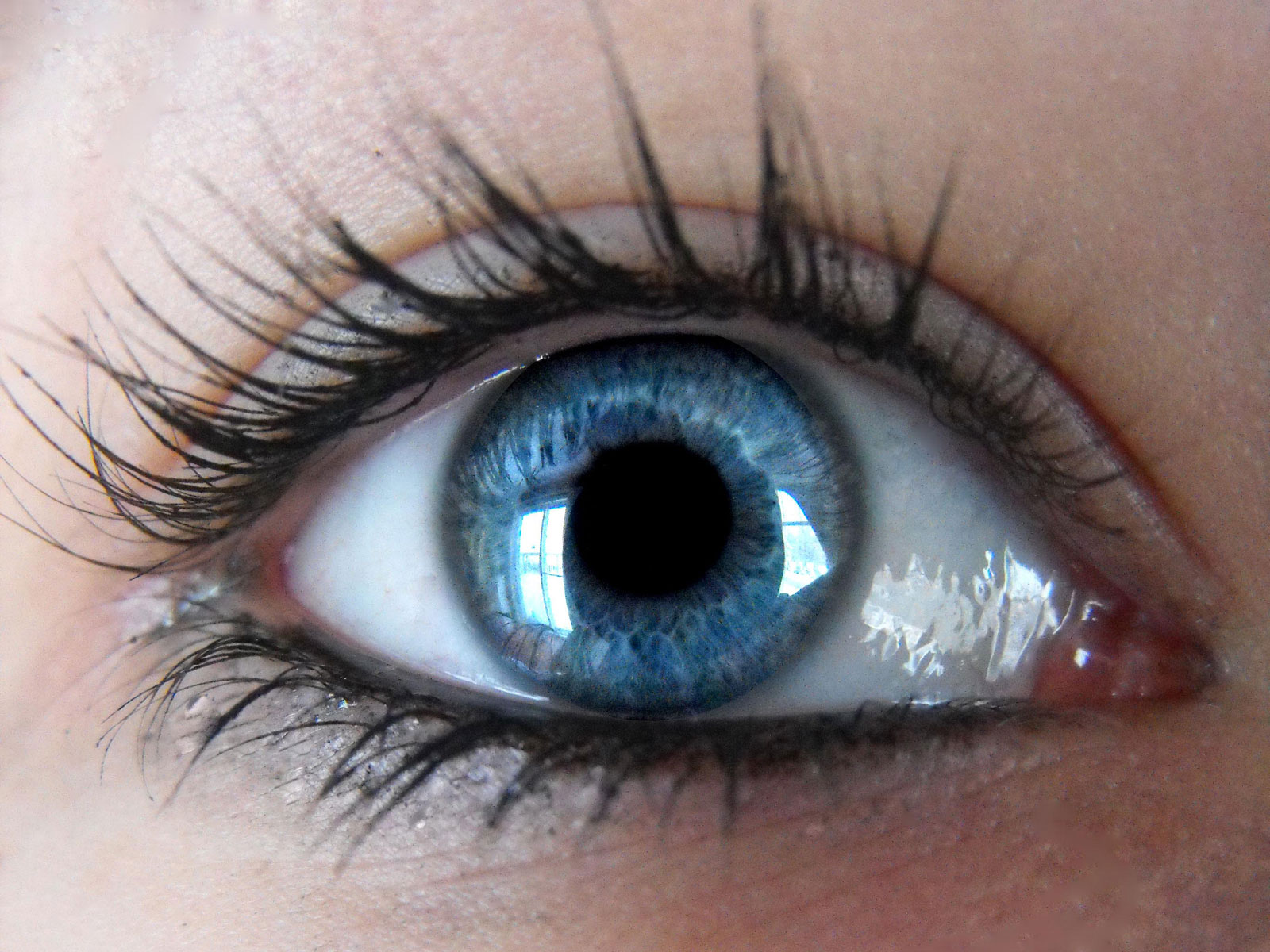 بالصور صور عيون حلوه , اجمل الصور للعيون 562 5