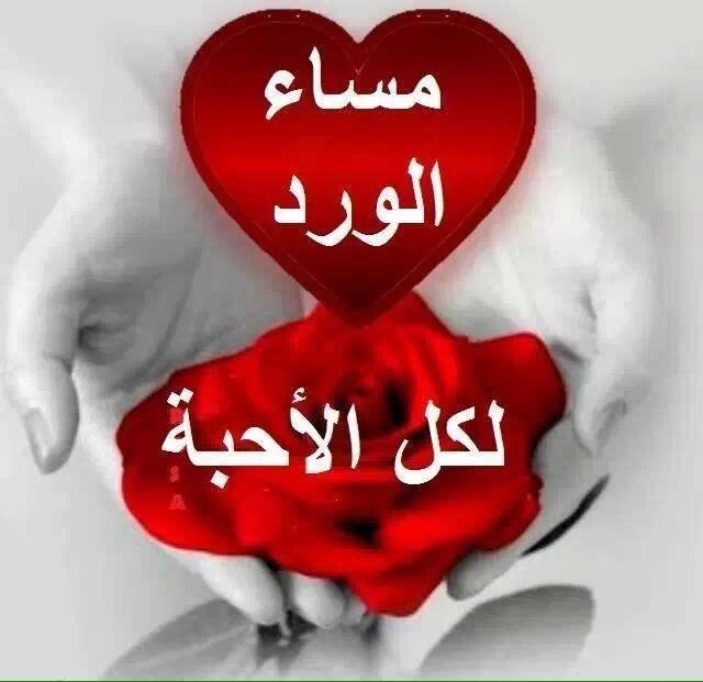 بالصور مساء المحبه , صور رسائل لامسيات سعيدة 4784 4