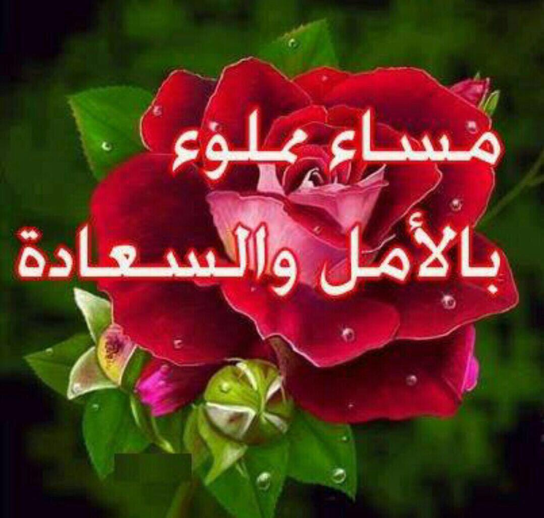 بالصور مساء المحبه , صور رسائل لامسيات سعيدة 4784 6