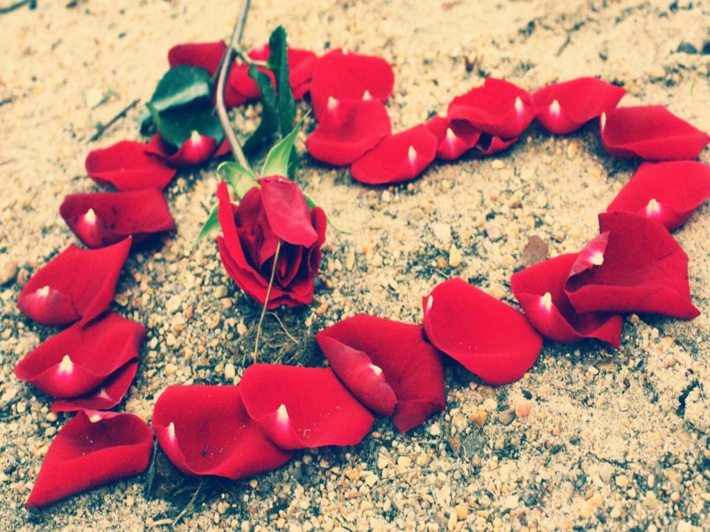بالصور احدث الصور الرومانسية , بيسيات رومانسية جميلة 4823 8