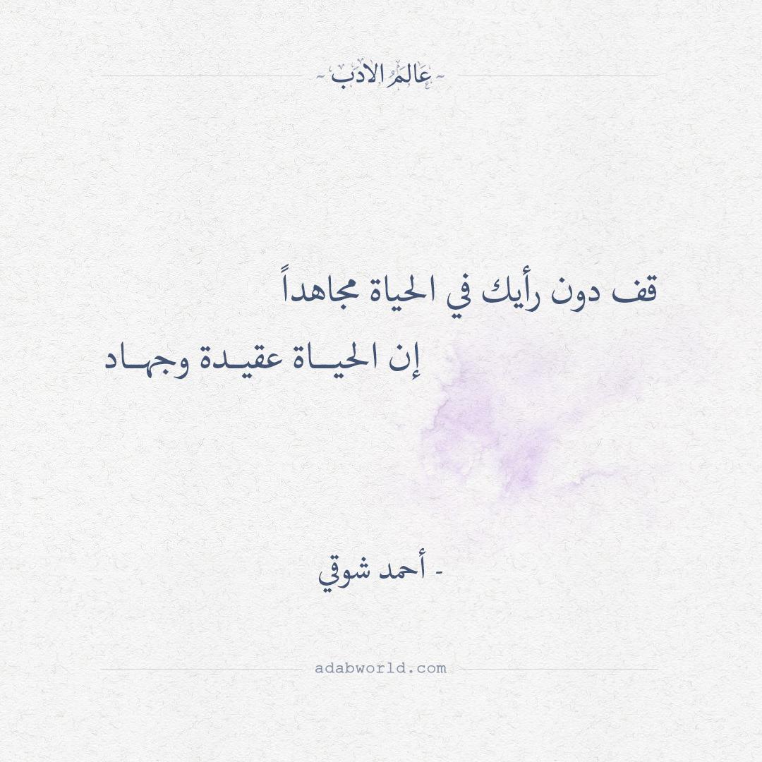 بالصور شعر عن الدنيا , كلمات معبرة في وصف الدنيا 4890 11