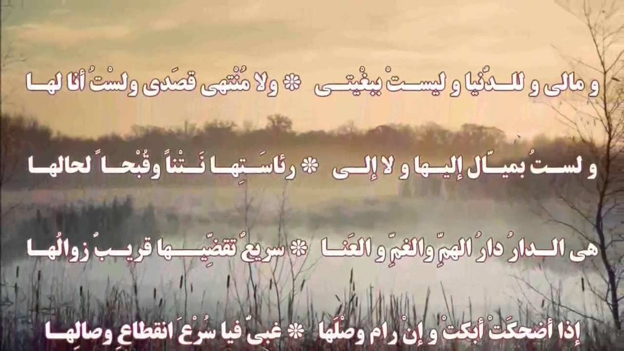 بالصور شعر عن الدنيا , كلمات معبرة في وصف الدنيا 4890 6