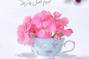 بالصور كلمات عن الصباح قصيره , رسائل صباحية بالصور 4983 19 310x205