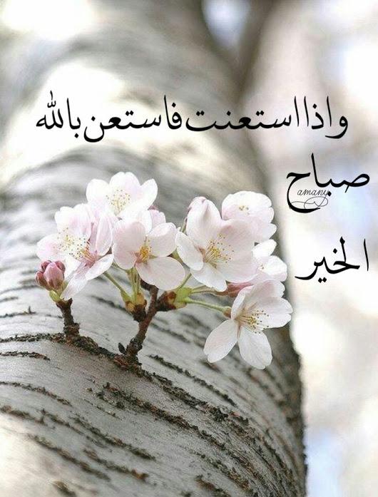 بالصور اجمل ماقيل عن الصباح , كلمات روعة لصباح مشرق 5013 3