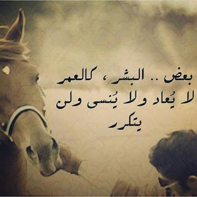 بالصور بيت شعر عن الشوق , اشعار رومانسيه جدا 5385 3