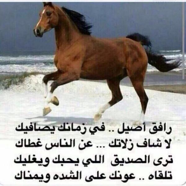 بالصور شعر مدح في شخص غالي , اشعار مدح و فخر 5396 2