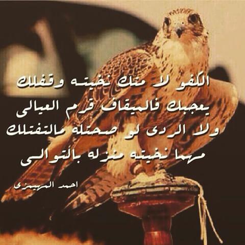 بالصور ابيات شعر مدح , اجمل انواع الشعر العربي 5408 3