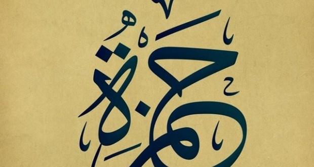 بالصور معنى اسم حمزة , اسماء جديده للاولاد 6089 2