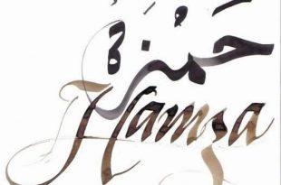 بالصور معنى اسم حمزة , اسماء جديده للاولاد 6089 3 310x205