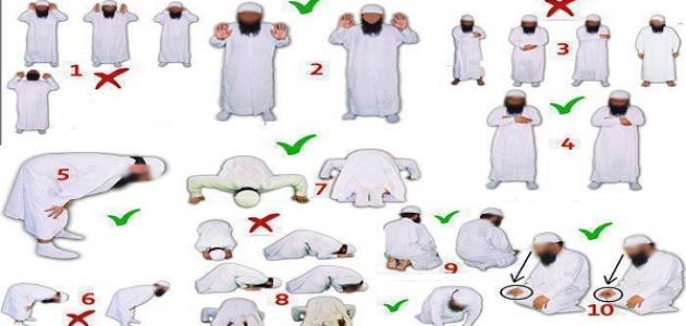 بالصور الطريقة الصحيحة للصلاة , ازاي اصلي صح 6111