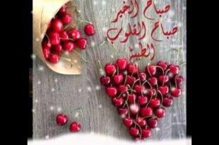 بالصور صباح الخير وكل الخير , صباح الحب و السعاده 6137 9 310x205
