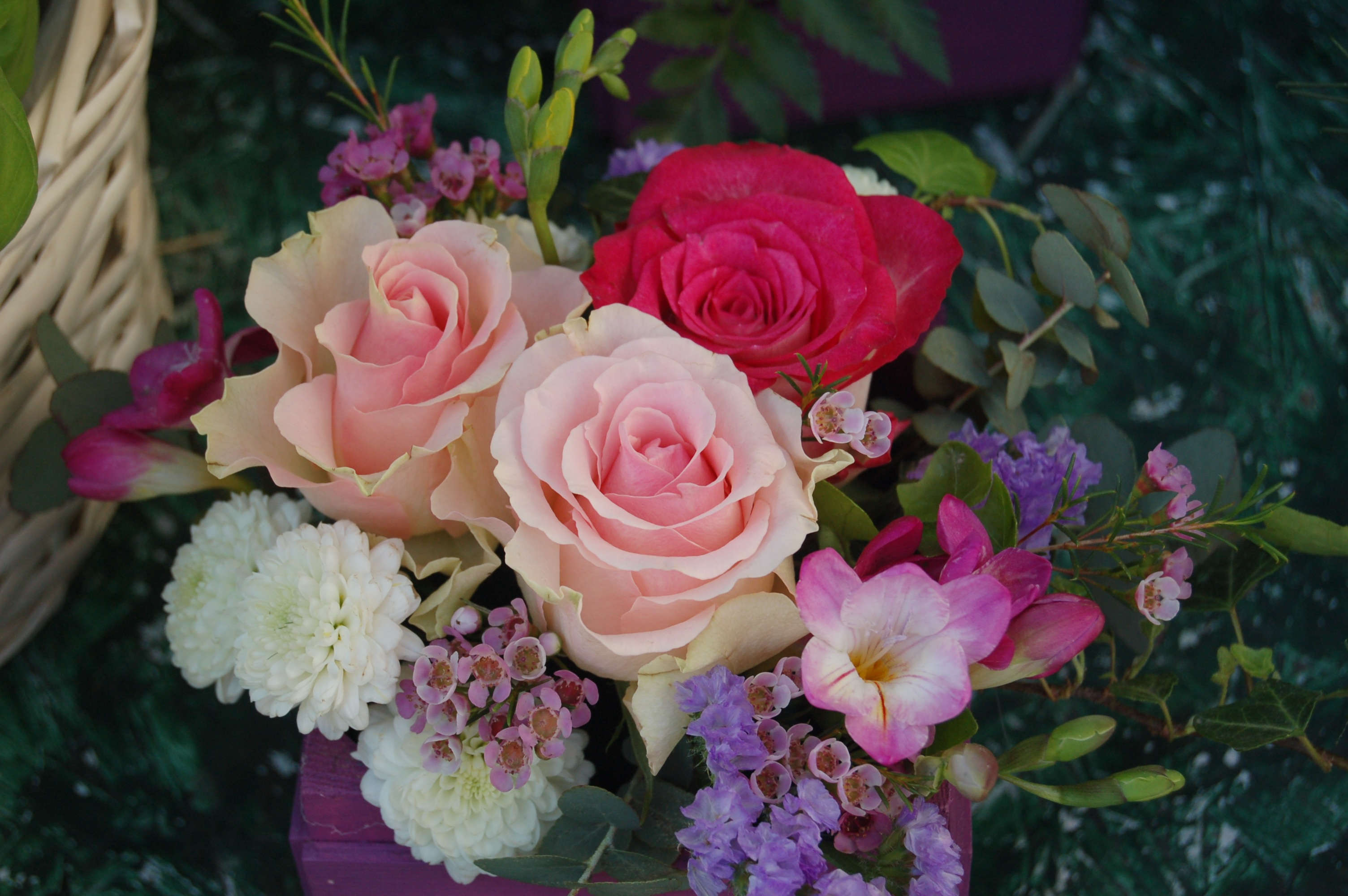 بالصور صور ورد جميل , ارق و اروع انواع الورود 6206 3