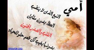 بالصور اقوال عن الام , كلمات في حب الام 6439 8 310x165