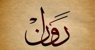 بالصور ما معنى اسم روان , اسماء ذات معاني جميله 6446 2 310x165