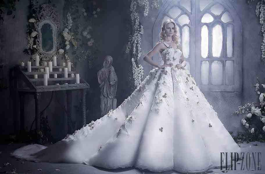 بالصور صور فساتين اعراس , فساتين زفاف مميزه 6536 7