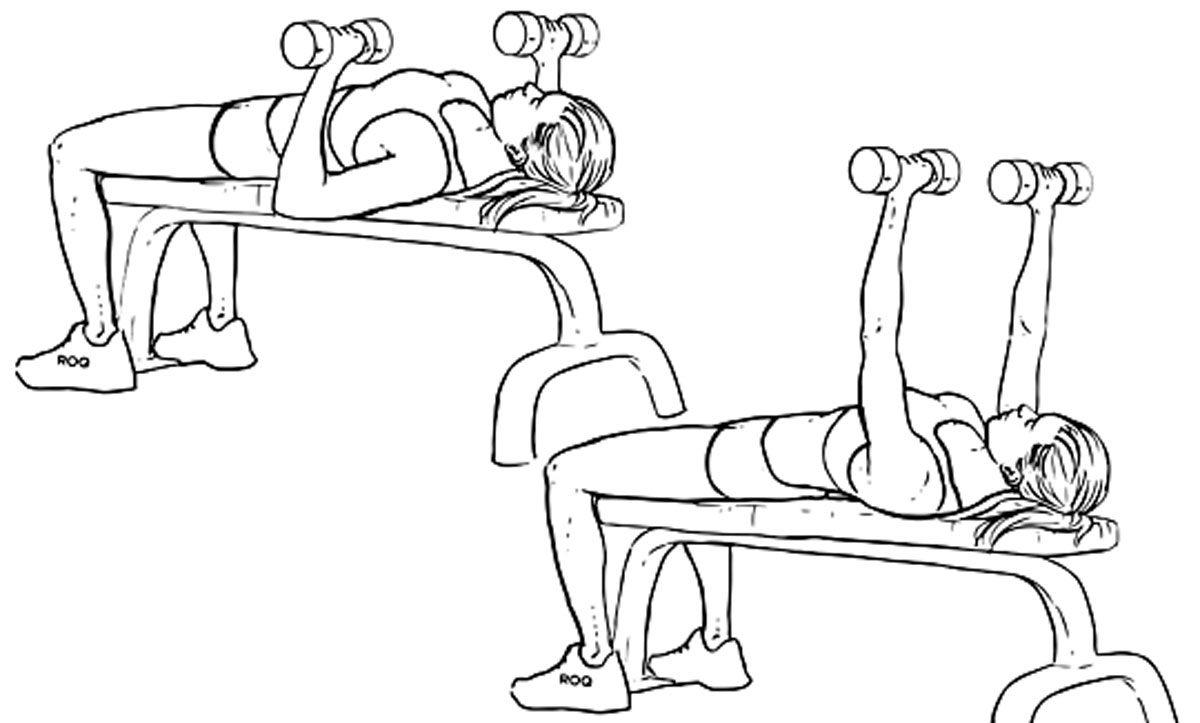 بالصور تكبير الصدر بالرياضة , اسهل التمارين لتكبير حجم الصدر 12362 3