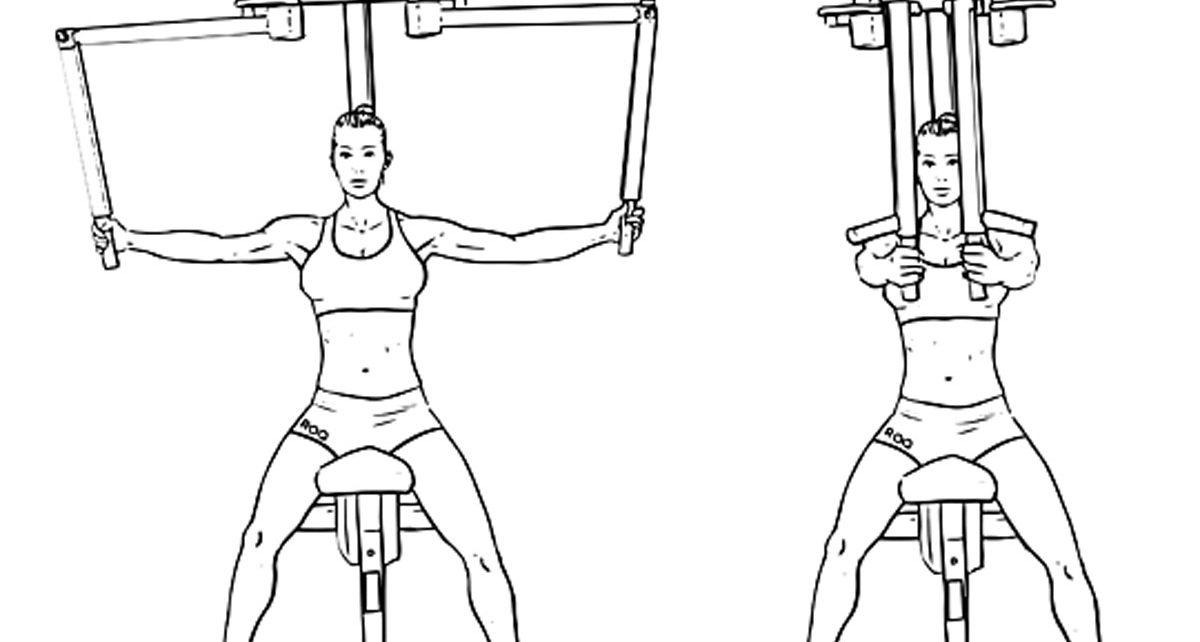 بالصور تكبير الصدر بالرياضة , اسهل التمارين لتكبير حجم الصدر 12362 6