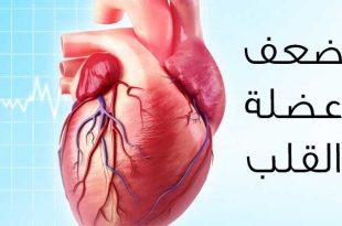 بالصور علاج قصور عضلة القلب , ما هي اسباب ضعف عضلة القلب 12413 2 310x205