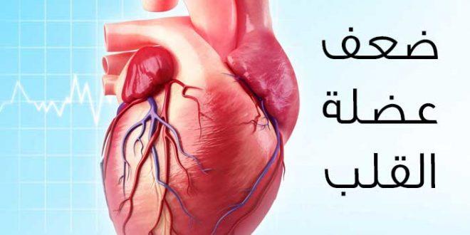 صورة علاج قصور عضلة القلب , ما هي اسباب ضعف عضلة القلب