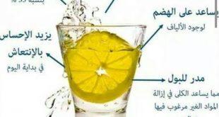 بالصور فوائد شرب الماء بالليمون , فوائد شرب الليمون مع الماء البارد 12424 2 310x165