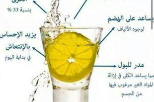 بالصور فوائد شرب الماء بالليمون , فوائد شرب الليمون مع الماء البارد 12424 2 310x205