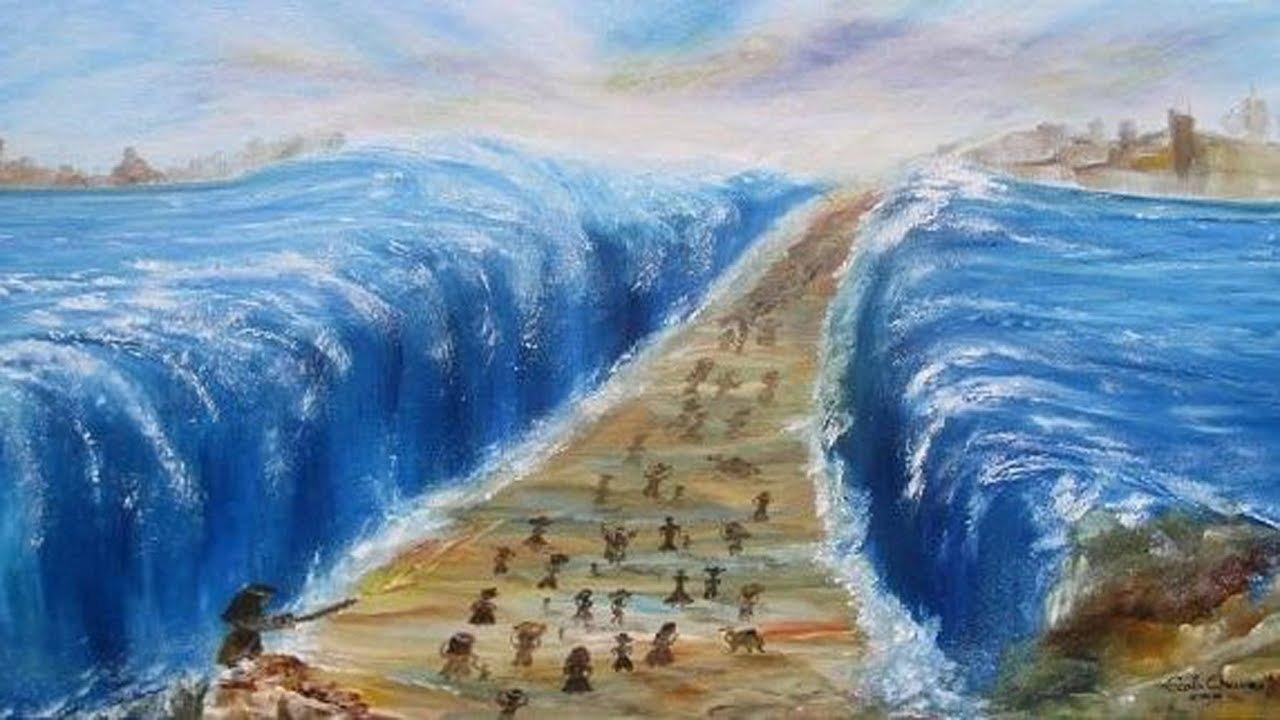 بالصور قصة عصا موسى , معجزات التي قامت بها عصا موسي 12447 2
