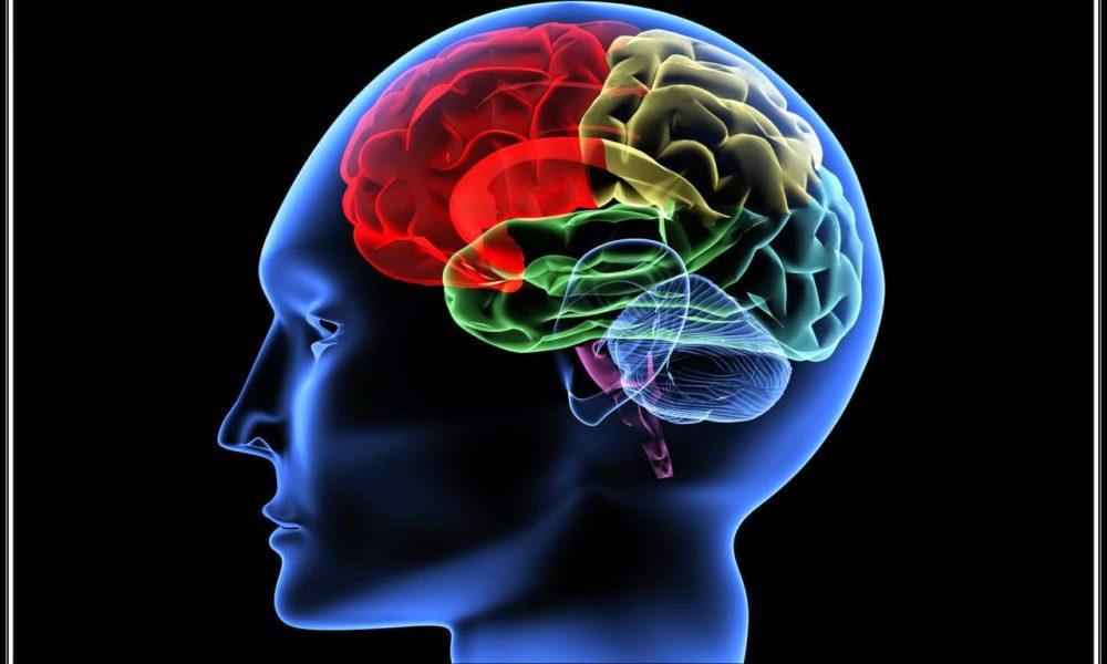 بالصور علاج ضمور المخ بالطب النبوي , ماهي اعراض الاصابة بضمور المخ 12466