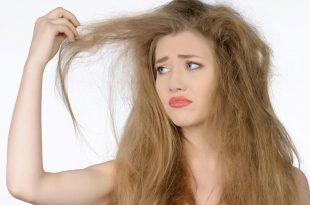 بالصور العنايه بالشعر الجاف والمتقصف , تعرفي علي الاسباب التي تسبب جفاف الشعر وتقصفه 12406 3 310x205