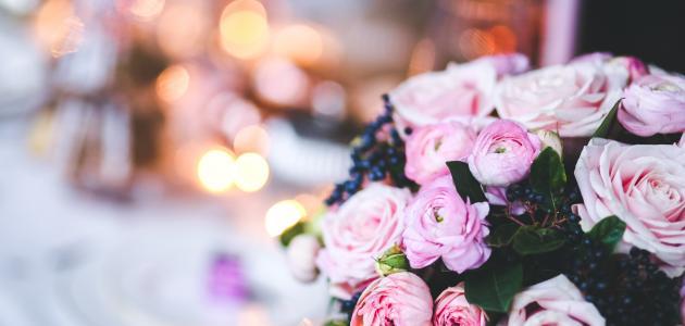 صور كلمات عن الورد الابيض , ما اجمل الورود