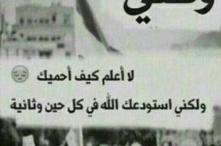 صورة اجمل خاطره عن الوطن , الوطن هو الاسرة اللي بننعم بدفئها