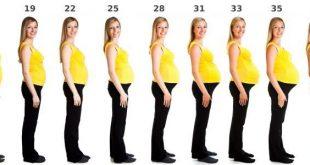 صور مراحل الحمل بالاسابيع والاشهر , وقت تكون الجنين