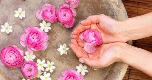 صور فوائد ماء الورد للصدر , ازدياد حجم الصدر