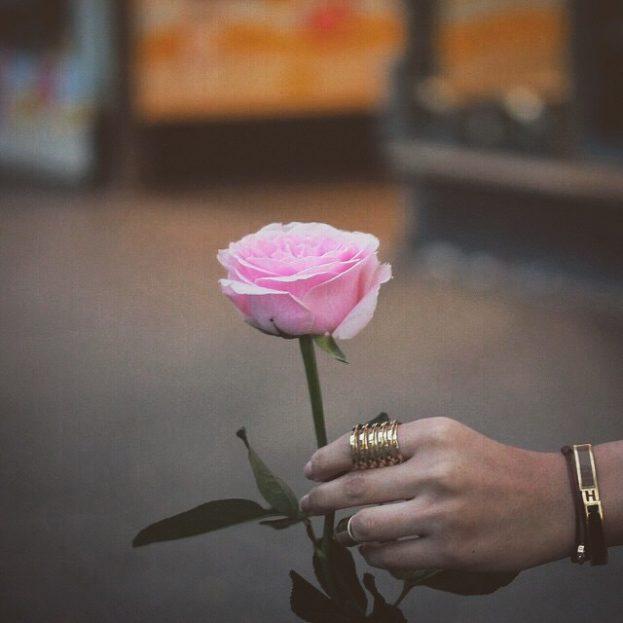 صورة صور ورد 2019 , الورود ليها تاثير ايجابي