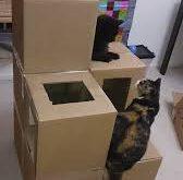 صور كيف تصنع بيت للقطط , بيت قطط جميل و رخيص