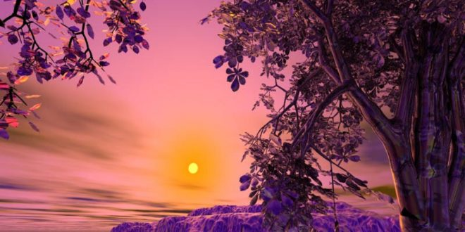 صورة صور مناظر جميله , لقطات من الطبيعه البهيه