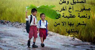 صورة اجمل كلام عن الصداقة، صديقي الغالي أحبك
