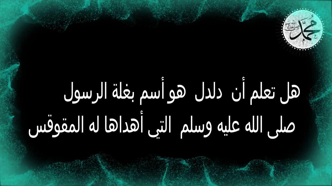 صورة هل تعلم عن الرسول,ونعلم عنك الكثير يارسول الله صلى الله عليه وسلم
