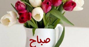 صورة احلى صور صباح الخير, أجمل عبارات صباح الخير