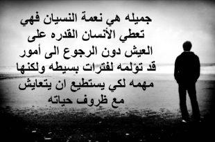 صورة كلام فراق وعتاب, عبارات عن فراق الحبيب